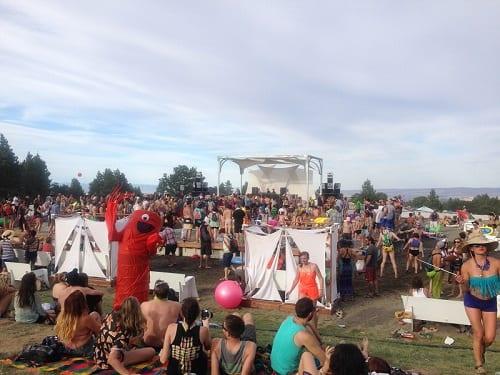 wtf festival 3