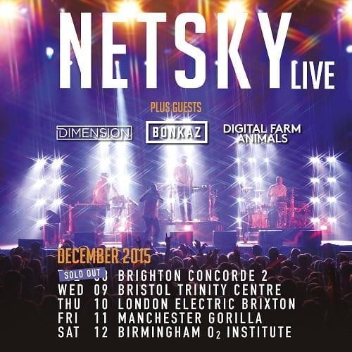 Netsky - Supports - Dec 15 - 1200x1200
